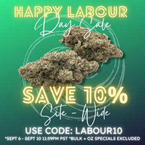 10% off coupon code for Labor Day