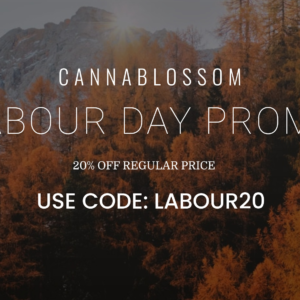 20% off all regular price items at CannaBlossom Dispensary.